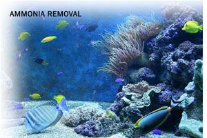 Ammosorb Eco Aquarium Ammonia Removal Granules 2 Lb