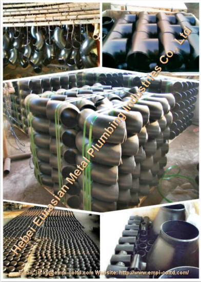 Ansi Carbon Steel Fittings
