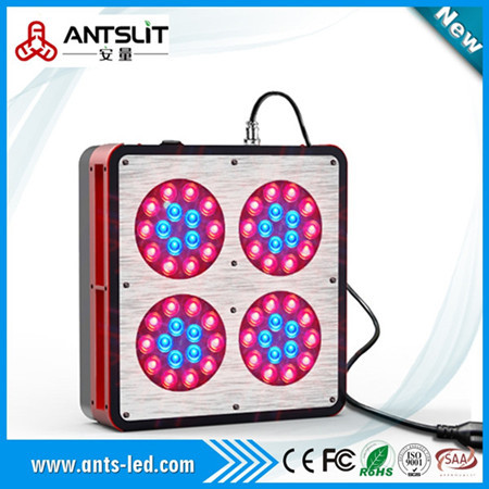 Apollo Series Led Grow Light 132w 725w Ratio Red Blue 8 1