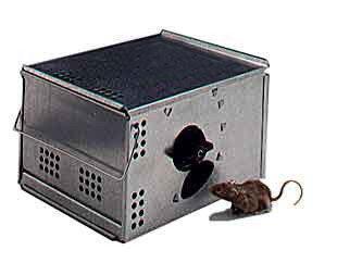 Automatic Multi Catch Mouse Trap Sx 5004