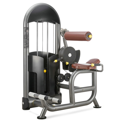 Back Extension Fitness Equipment Gym