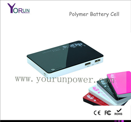 Backup Batteries 5000mah Power Banks For Ipad