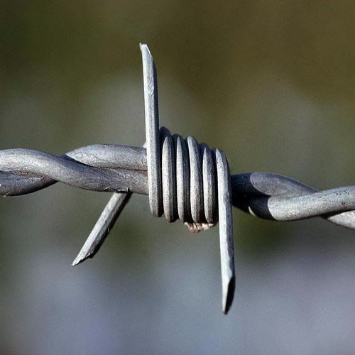 Barbed Wire Galvanized Pvc Coated Stainless Steel
