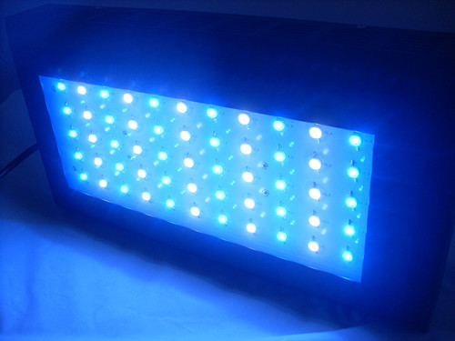 Best Quality 120w Led Aquarium Lighting Dimmable Factory Sale For 20 L 2013