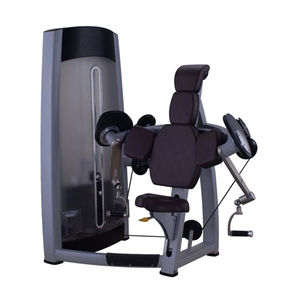 Biceps Curl Fitness Equipment Gym