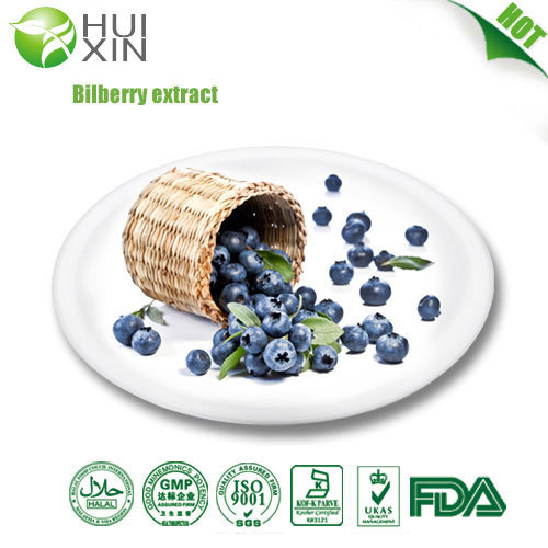 Bilberry Extract 25 30 40