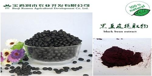 Black Bean Peel Extract Anthocyanidin 25