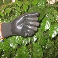 Black Nitrile Coated Working Gloves Ng1501 9