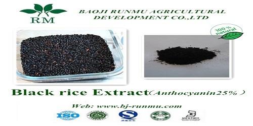 Black Rice Extract Anthocyanidins 25