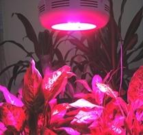 Bs001 98x3w Grow Light High Lumen