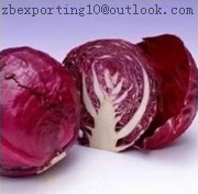 Cabbage Red Natural Pigment