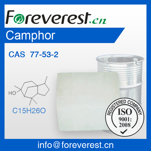 Camphor Supply Cas 77 53 2 Foreverest