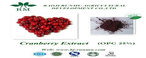 Canada Cranberry Extract