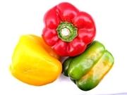 Capsicum Extract Natural Plant