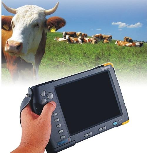 Cattle Cow Sheep Ultrasound Scanner Cd66v