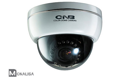 Cctv Camera Lbm 20vf 21vf