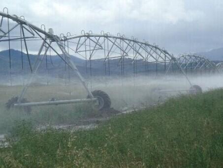Center Pivot Irrigation System Automatic Farm