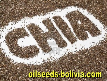 Chia Seeds Bulk Sale
