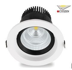 Citizen Led Down Light