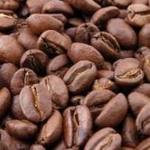 Coffee Robusta Luwak