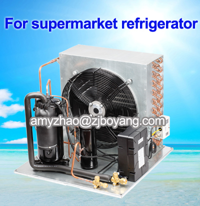 Condenser For Cold Room With Condensing Unit