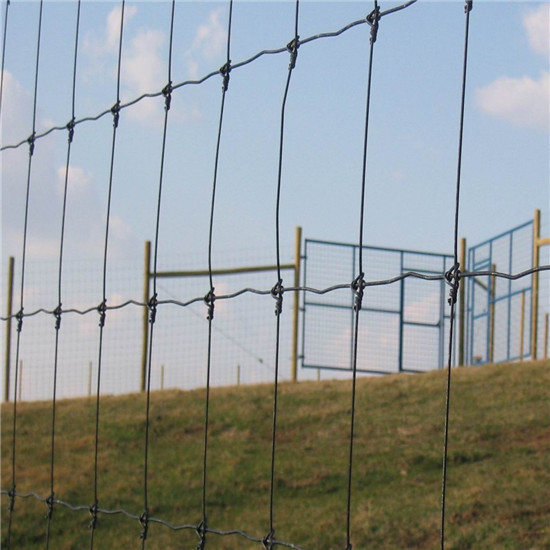 Cow Fence Wire Mesh Cheap Cattle