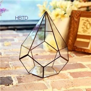 Creative Diy Succulent Plant Geometry Transparent Indoor Glass Flower Pot