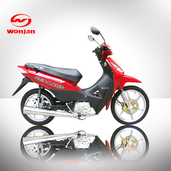 Cub Bike Model Wj110 7c