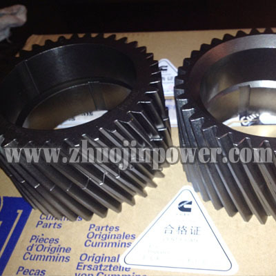 Cummins Engine Part Grankshaft Gear 3014614