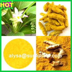 Curcumins Turmeric Extract