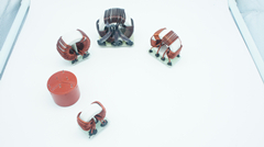 Custom Common Mode Inductors