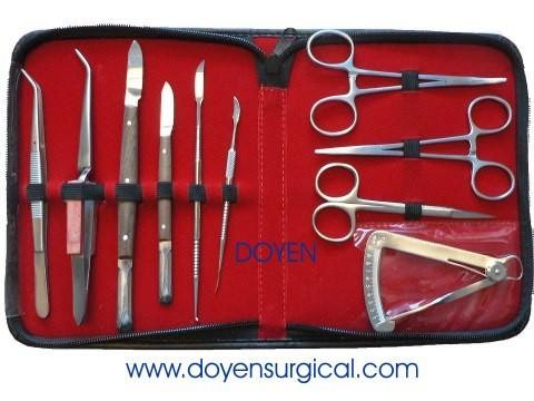Dental Instruments Set