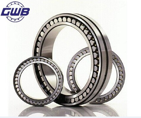 Double Row Thrust Ball Bearing