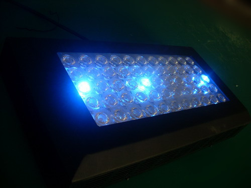 Ebay Worldwide Standard Led Aquarium Light Allocated Lights 1200mm Dimmable