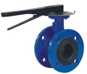 Eccentric Butterfly Valve Flange Type