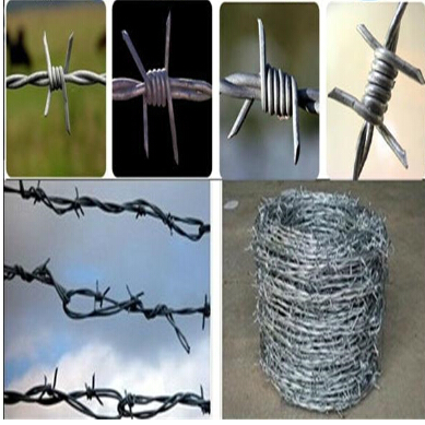 Electro Galvanized Hot Dipped Pvc Coated Barbed Wire