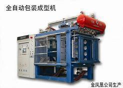 Eps Automatic Shape Molding Machine With Vacuum