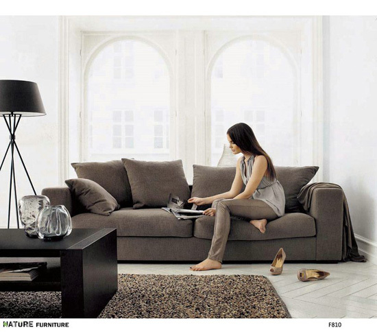 F810 3seat Only Comfortable Sofa Economic Furniture
