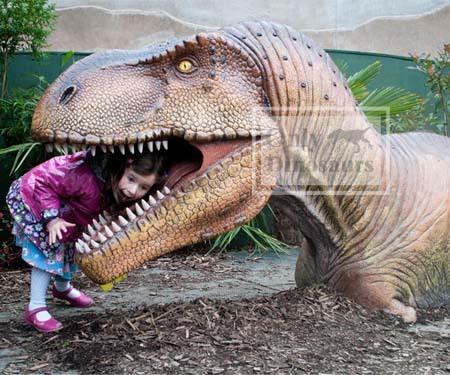 Fiberglass Dinosaur Head Model