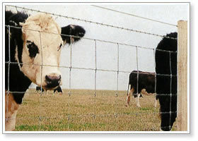 Field Fence Grassland Manufacturer