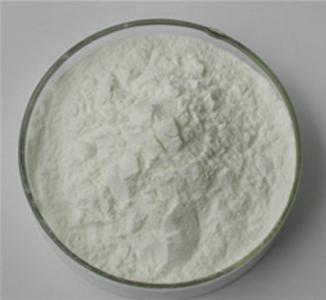 Fish Collagen Supplier