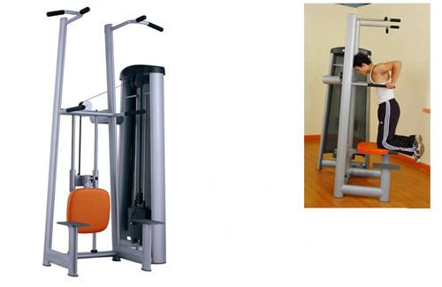 Fitness Equipment Body Building Assist Dip Chin Machine For Strength Traini
