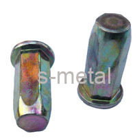 Flat Head Closed End Blind Rivet Nut