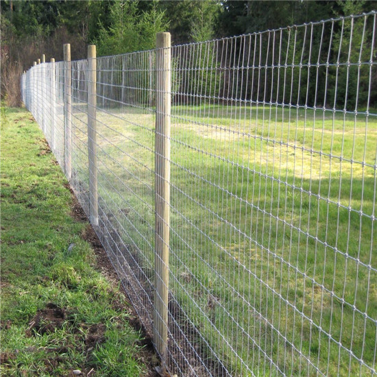Galvanized 1 5m 8m Grassland Field Cattle Mesh Fence For Sheep And Cow