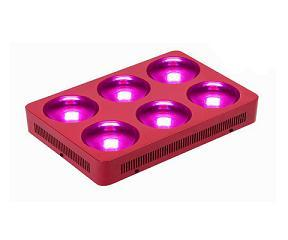 Garden Led Light Plant