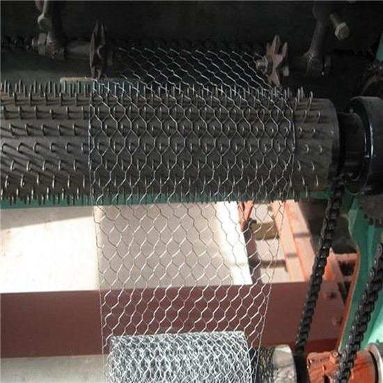 Hexagonal Poultry Wire Netting Factory Price