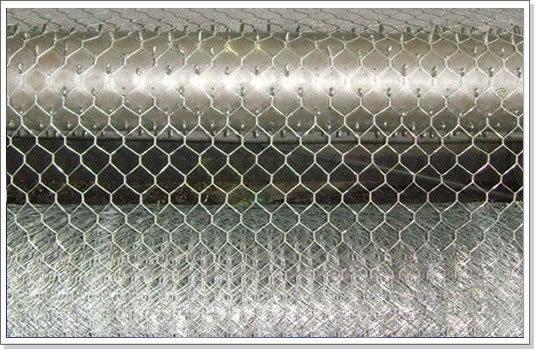 Hexagonal Wire Mesh Galvanized Pvc Coaetd Stainless Steel
