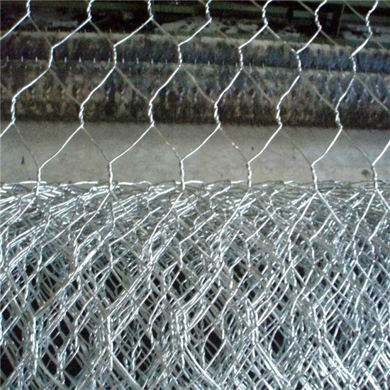 Hexagonal Wire Netting Mesh Chicken