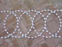 Hot Diped Galvanized Razor Barbed Wire Z