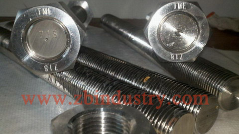 Inconel718 Stud Bolt With Nut Washer